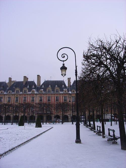 boş sokak, Fransa, kış, Paris içeren Ücretsiz stok fotoğraf