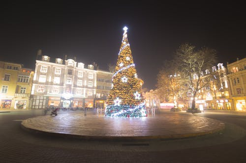 Lighted Chirstmas Tree during Night Time