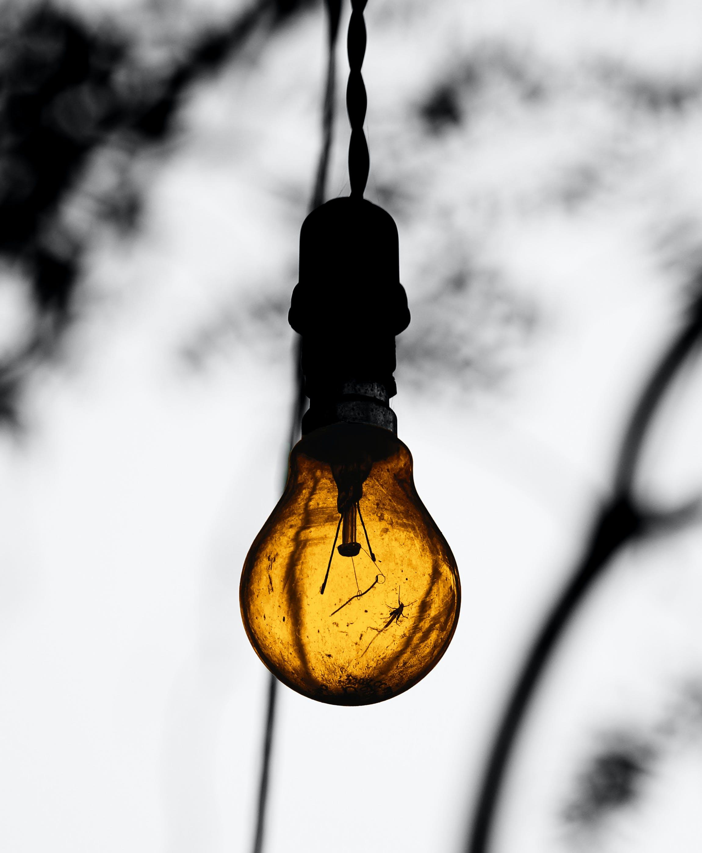 Close-Up Photography of Lightbulb