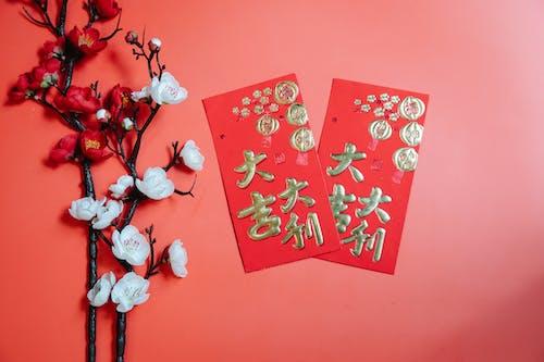 Oriental envelopes against decorative blooming Prunus on red background