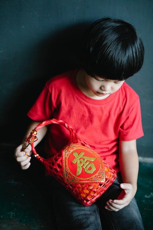 Foto d'estoc gratuïta de adorable, any nou lunar, any nou xinès