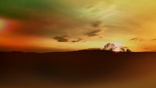 傍晚的天空, 傍晚的太陽, 分支機構, 地平線 的 免费素材照片