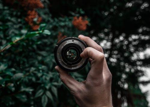 Imagine de stoc gratuită din adâncime de câmp, concentrare, degete, echipament de cameră foto