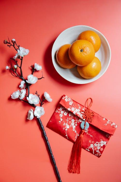 Red packet near blooming Sakura twig and fresh mandarins