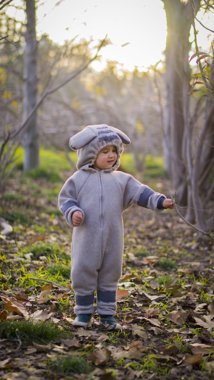 Free stock photo of autumn, autumn leaf, autumn leaves, dress up