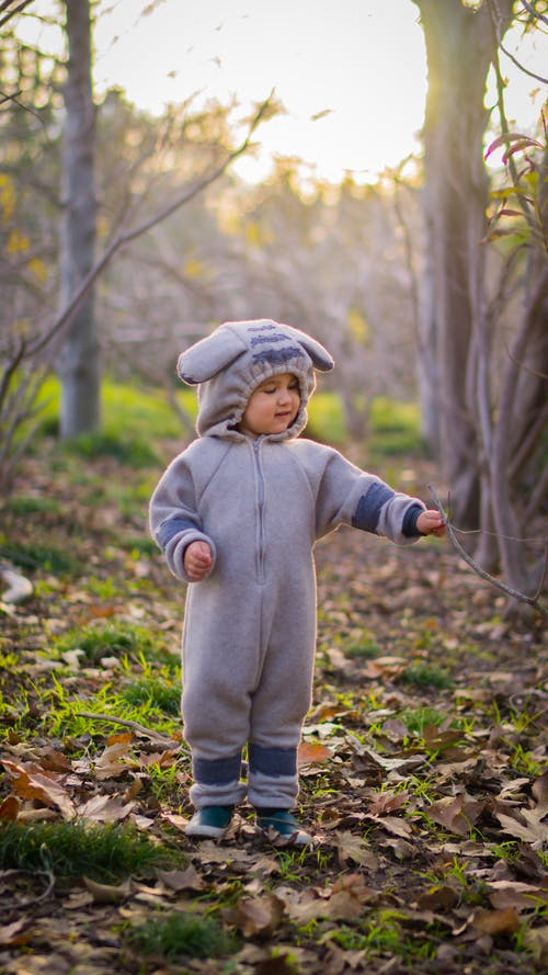 Free stock photo of forest, toddler