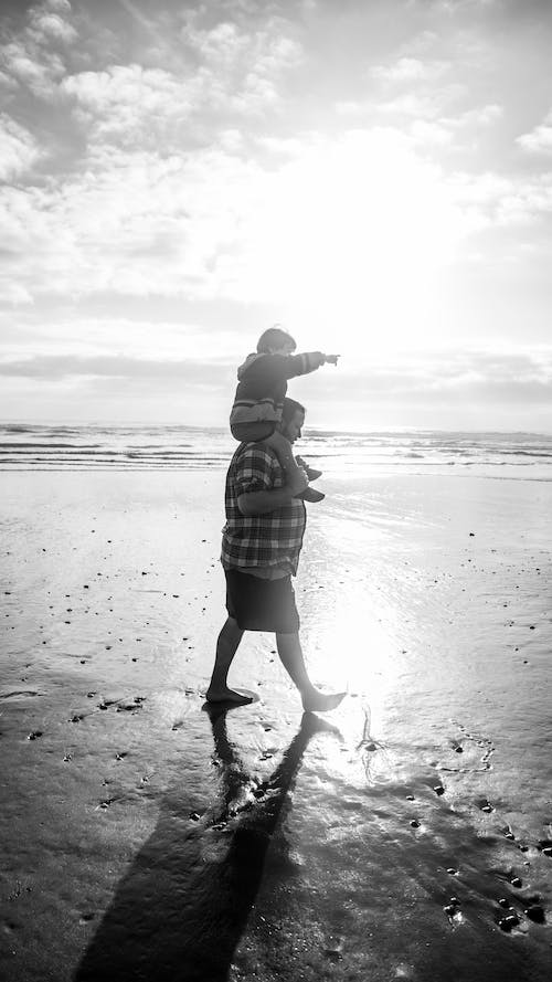 Free stock photo of beach, family, father