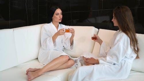 インドア, お茶, カップの無料の写真素材