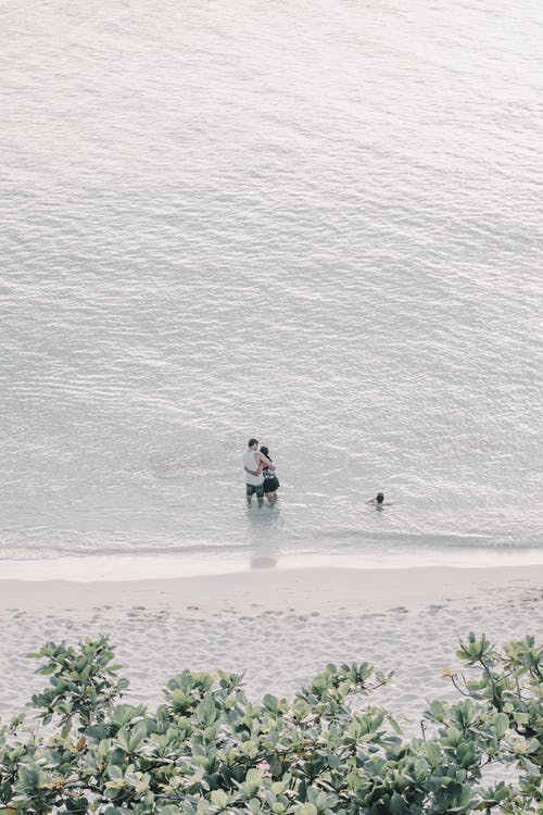 2 Person in Blue and Black Wet Suit on White Sand Beach