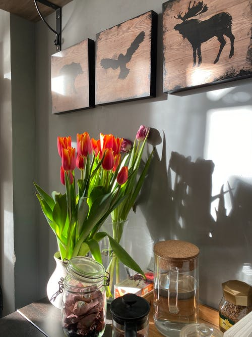 Red and Yellow Tulips in Clear Glass Vase