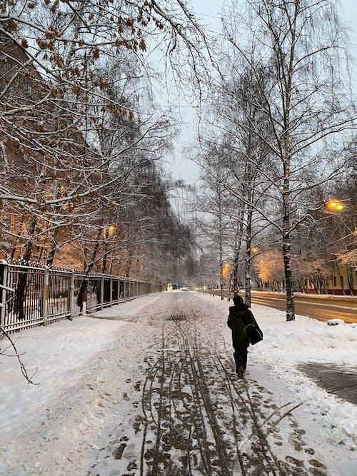 Free stock photo of boy, snow, street
