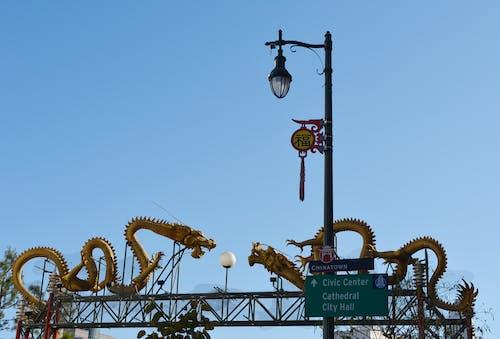 Free stock photo of china, chinatown, dragons