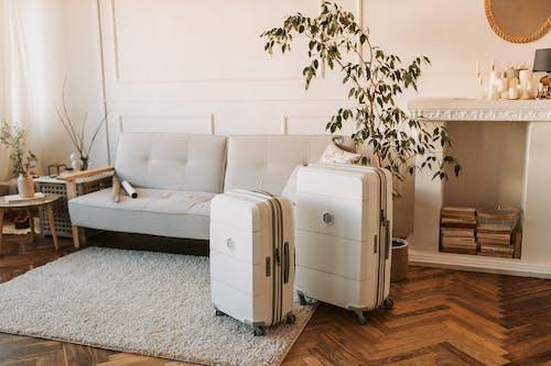 Ilmainen kuvapankkikuva tunnisteilla asetelma, luggages, matkalaukut