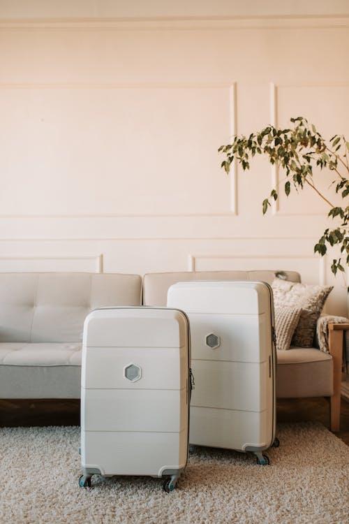 White 2 Seat Sofa Beside Green Plant