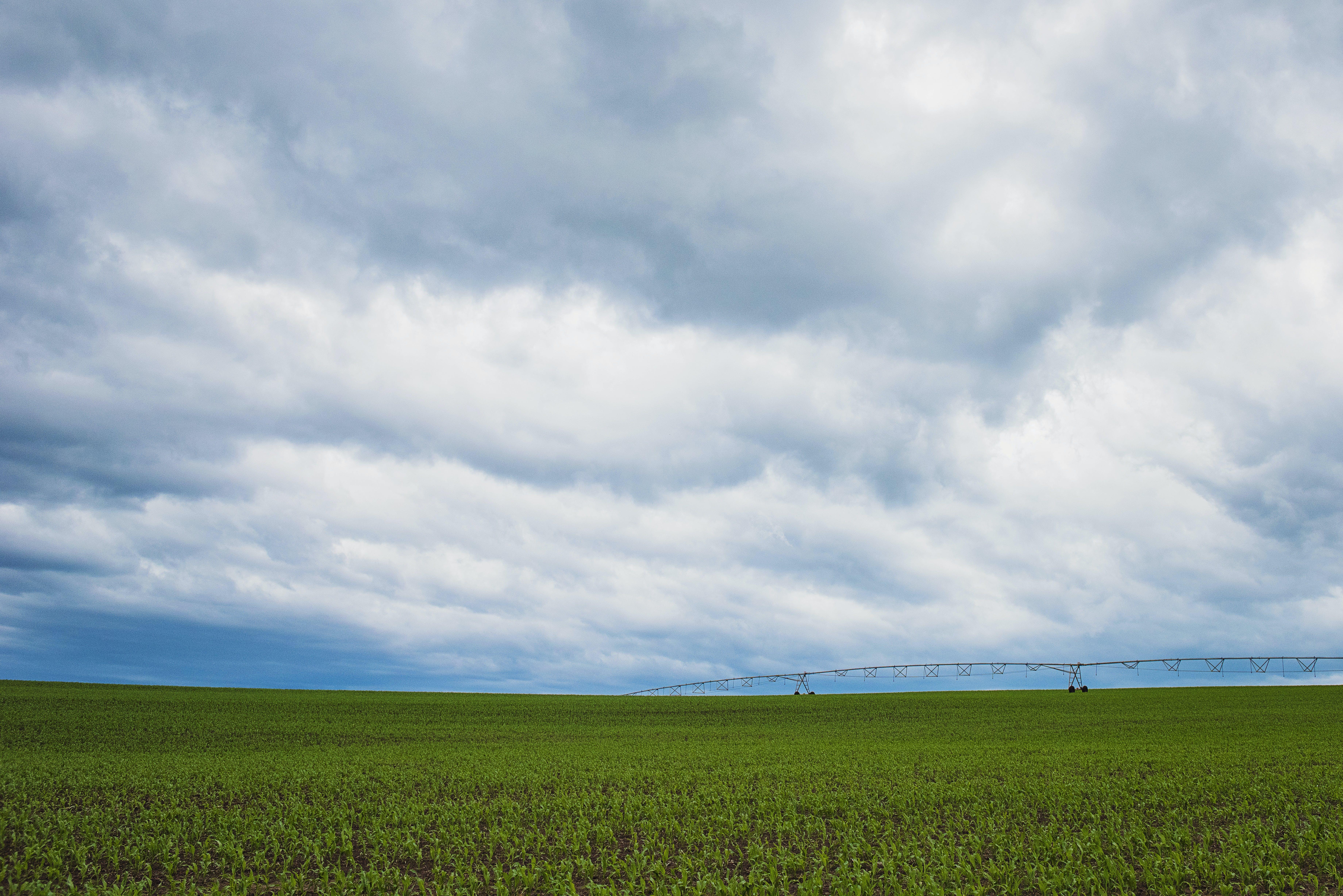 Green Grass Field Under Cumulonimbus Clouds