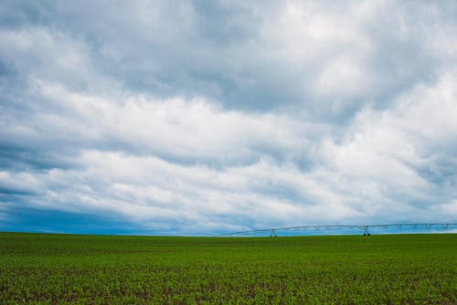 Green Grass Field Under Cumulonimbus Clouds