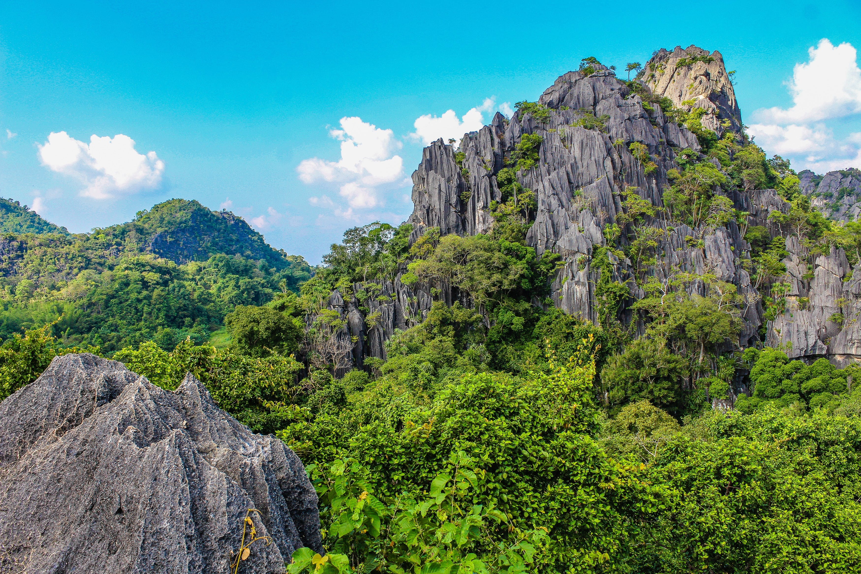 Foto stok gratis alam, alam liar, awan, bagus