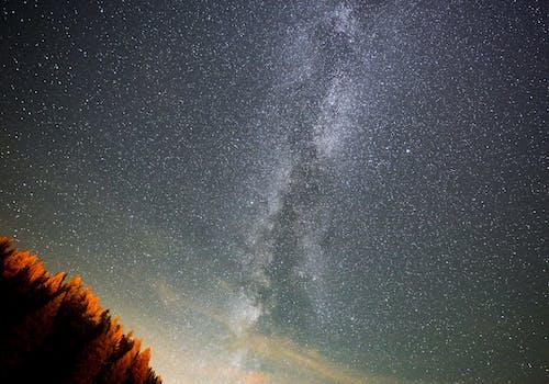 Free stock photo of at night, milky way, starry night