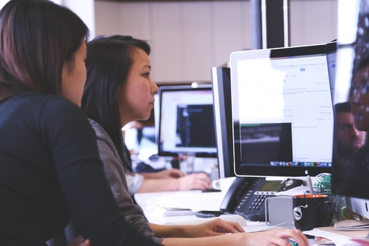 Free stock photo of person, woman, office, working