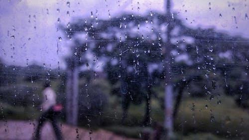 Δωρεάν στοκ φωτογραφιών με βροχερή μέρα, βροχή, ζοφερός, ημέρα
