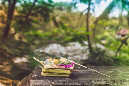 Imagine de stoc gratuită din arbori, artă, Asia, aspect