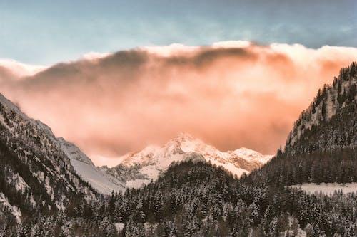 下雪的, 不清楚, 冬季, 冰 的 免费素材照片