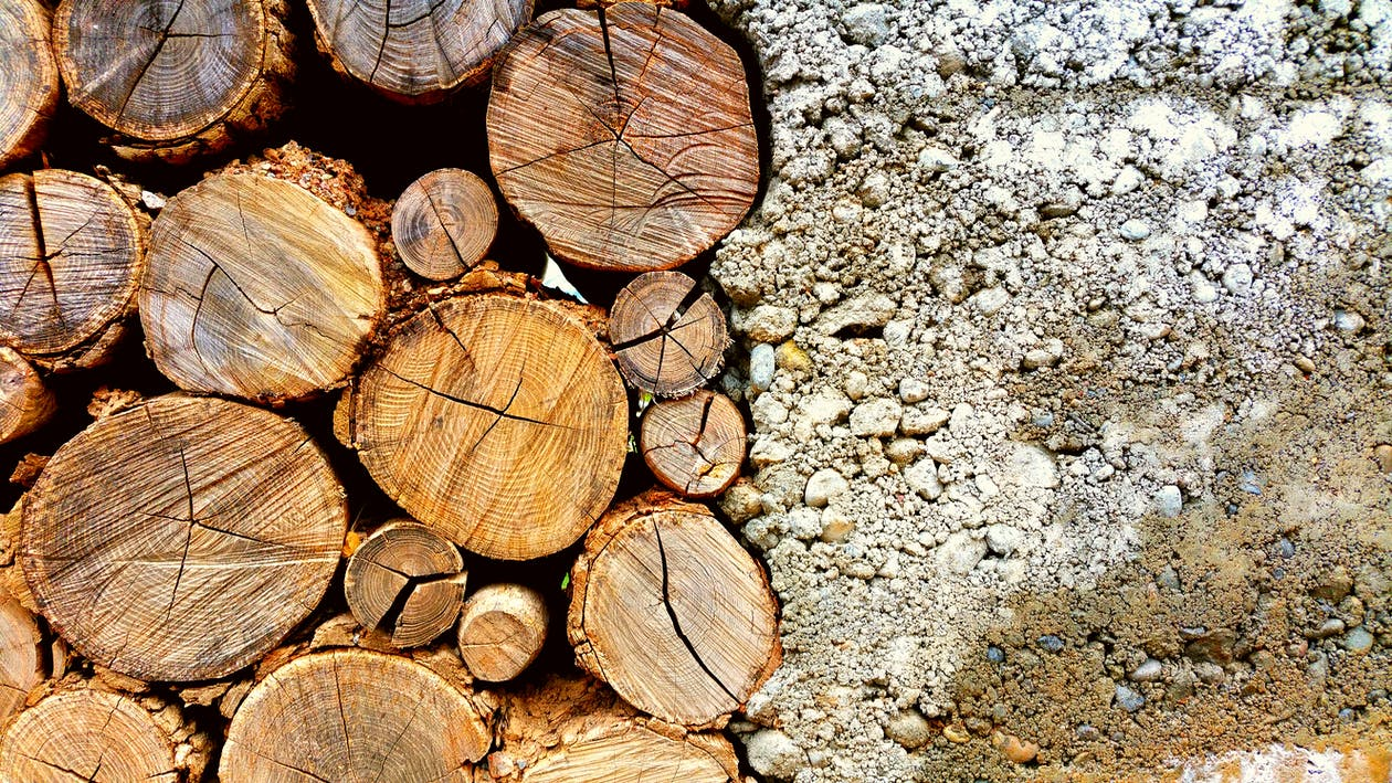 bark, beton, bunke