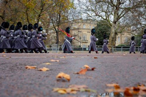 Základová fotografie zdarma na téma Anglie, chůze, královské stráže