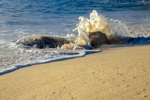 Základová fotografie zdarma na téma caribe, cozumel, mar fotos