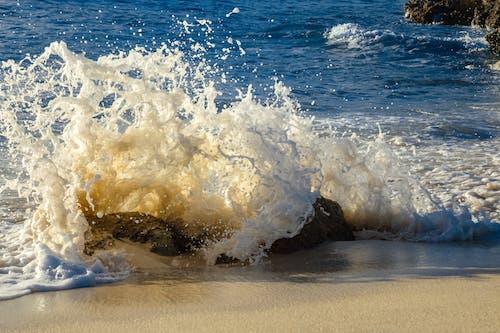 Základová fotografie zdarma na téma cákání, mar fotos, océano pacífico fotos