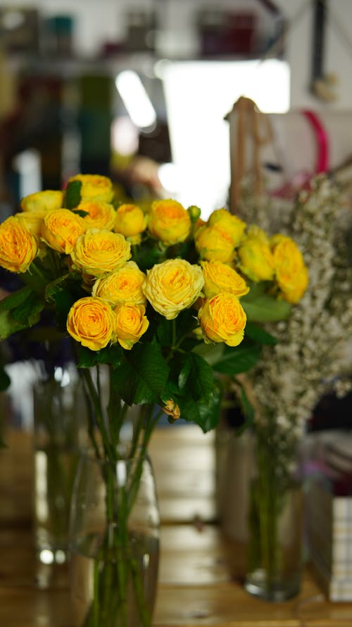 Bunch of fresh roses with yellow petals with green stalks placed in glass vase in light room on blurred background