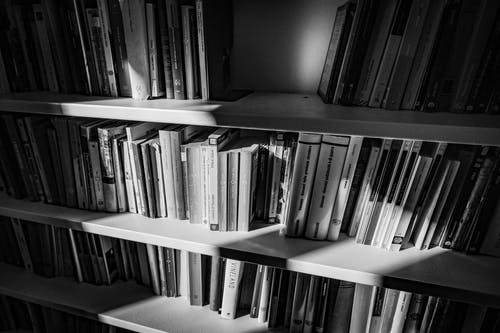Rows of shelves with books at sunlight