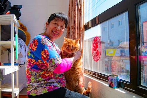 老年婦女, 貓, 陽光 的 免費圖庫相片