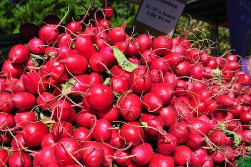 Free stock photo of eating healthy, farmers market, fresh