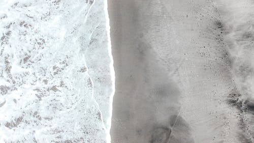天性, 头顶射击, 岸邊 的 免费素材图片