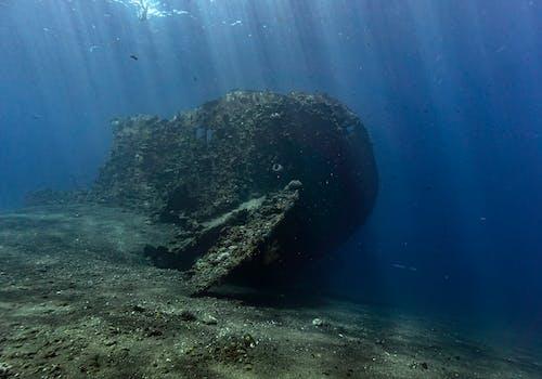 Brown Rock in Body of Water