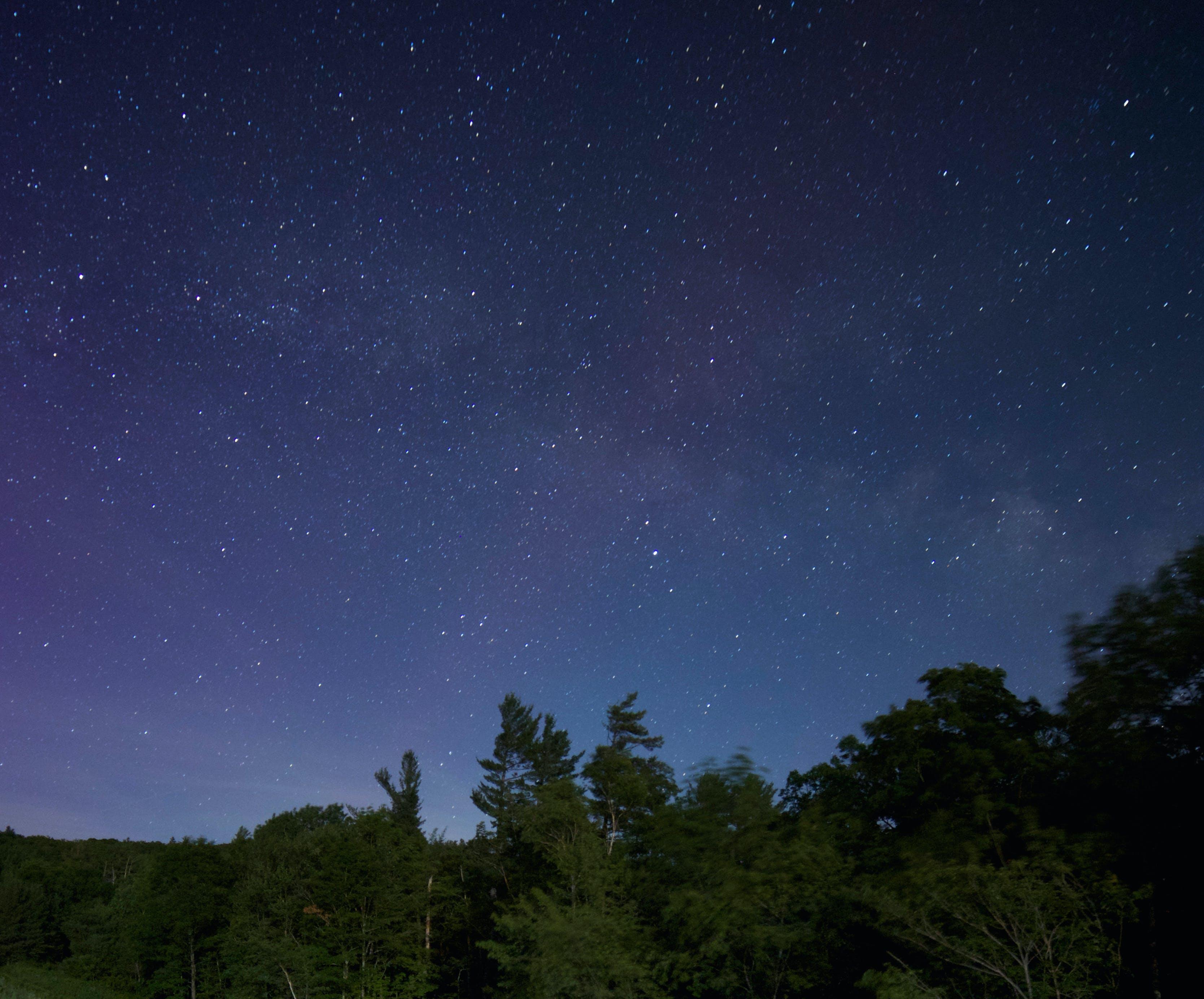 Green Trees Under Galaxy Stars