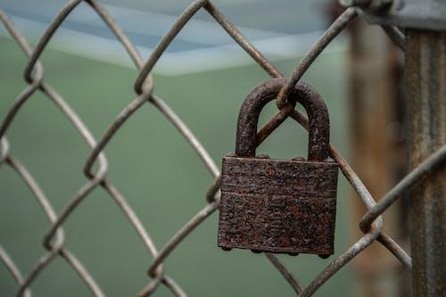 Fotobanka sbezplatnými fotkami na tému drôtený plot, hrdza, hrdzavý