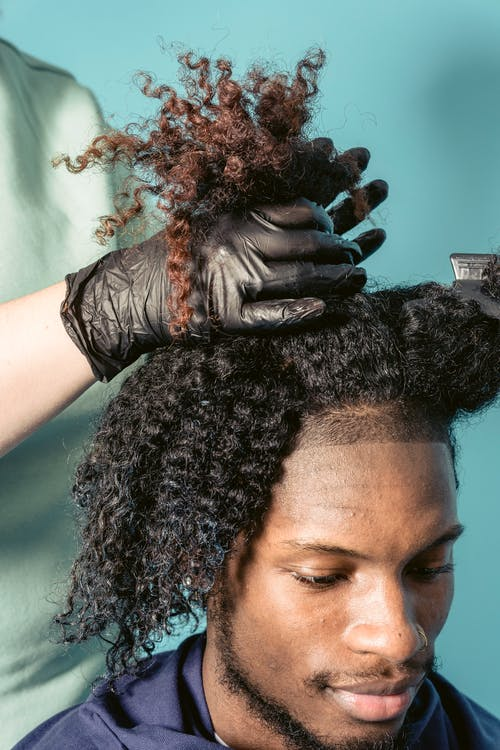 Hairdresser styling hair of black male client in studio
