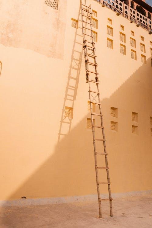 Foto profissional grátis de andaime, andar de cima, andar superior