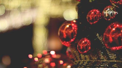 คลังภาพถ่ายฟรี ของ ã¡rvore de natal, decoraã§ã£ o de natal, luzes de natal, ของตกแต่งวันคริสต์มาส