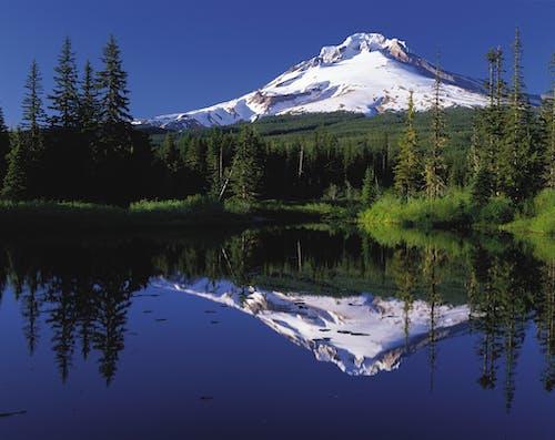 Бесплатное стоковое фото с гора, деревья, живописный, отражение
