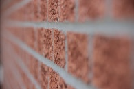 bricks, wall, macro
