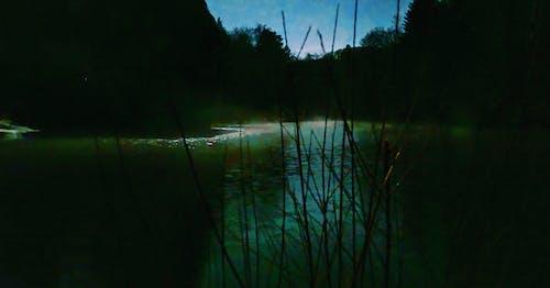 Kostenloses Stock Foto zu grünes wasser, landschaft, nebel