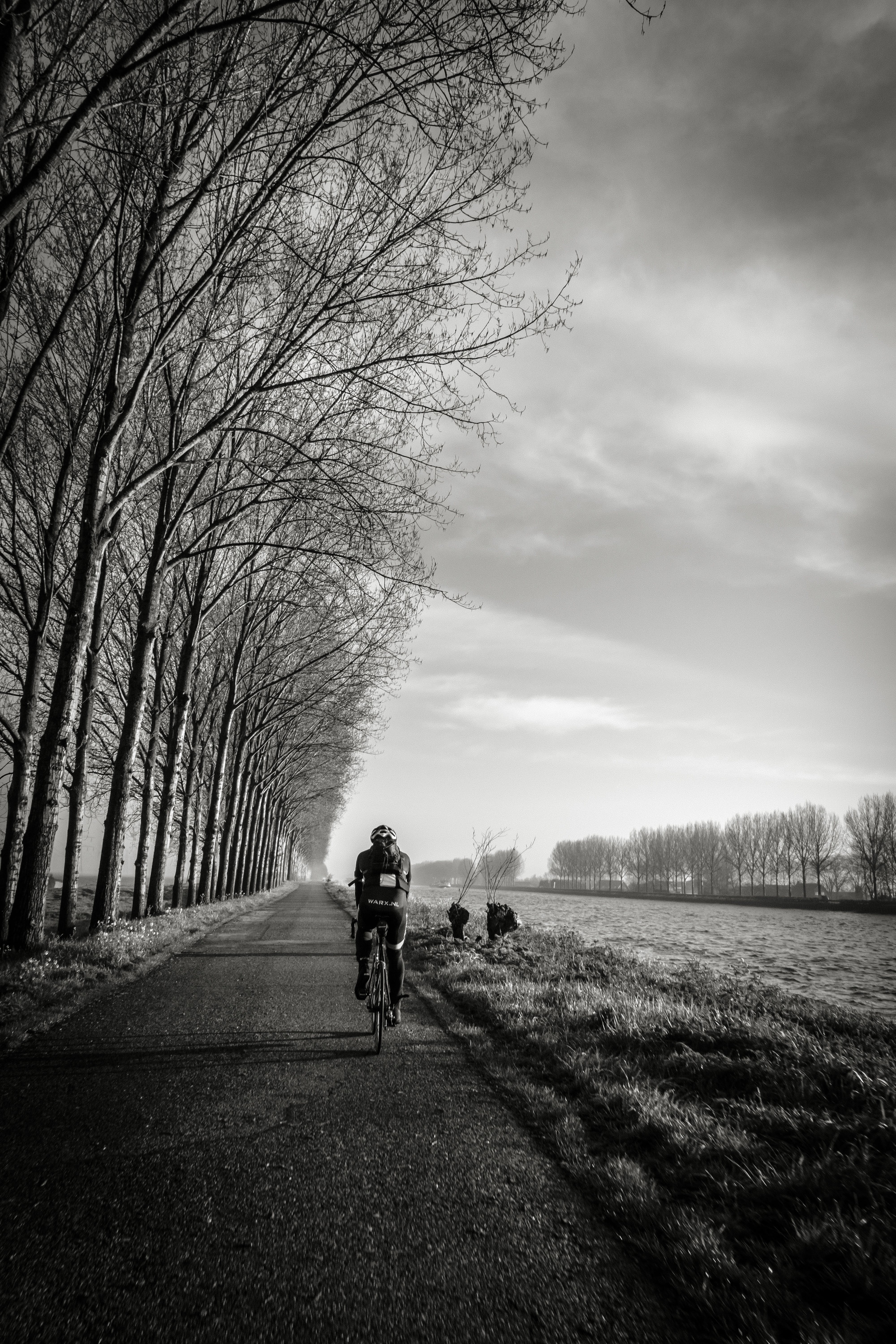 Grayscale of Person Riding Bike