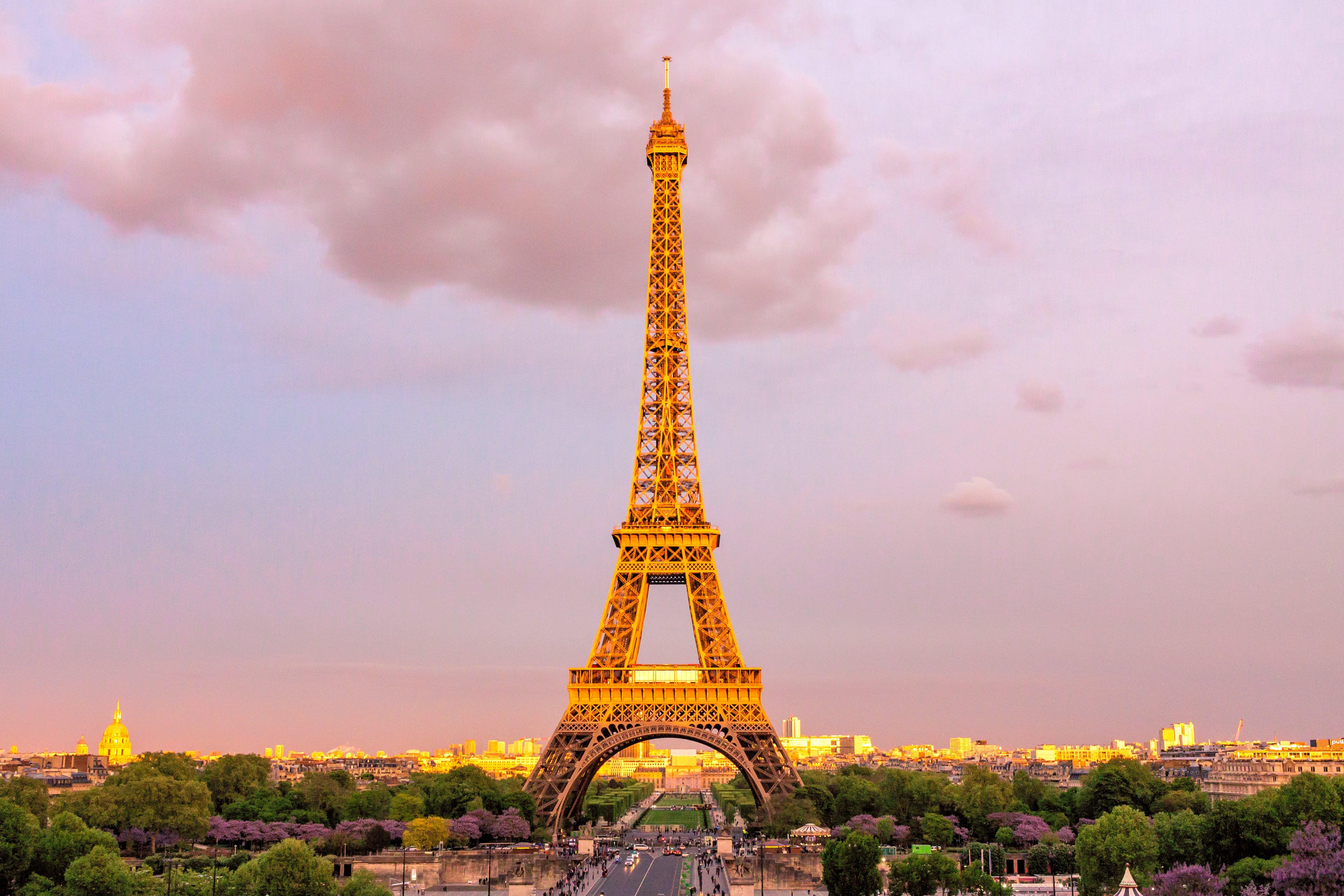 L'eroe dell'attentato del terrore di Parigi ha aiutato a salvare gli artefatti di Notre Dame, dice il sindaco thumbnail