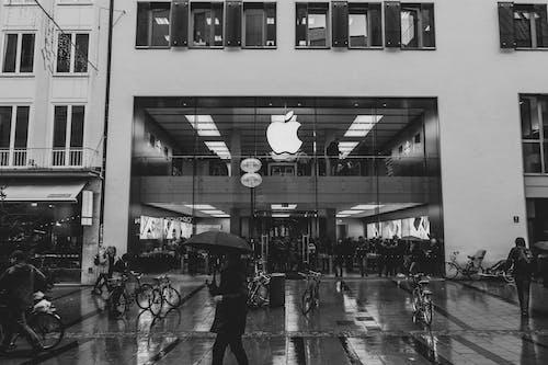 Kostenloses Stock Foto zu apfel, apple, apple laden