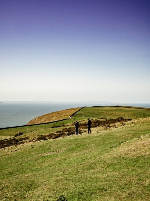Anonymous people standing on spacious lush seacoast beneath clear blue sky on sunny day