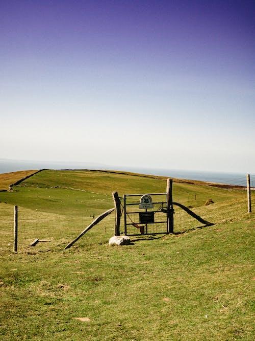 Net fence on spacious grassy seacoast