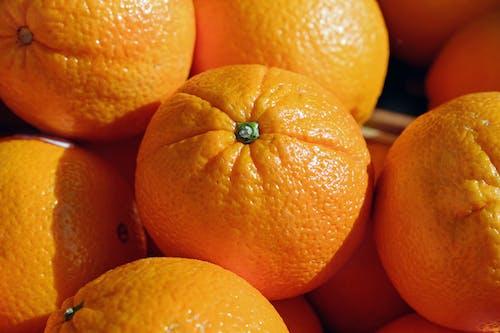 Free stock photo of citrus, exotic, farming